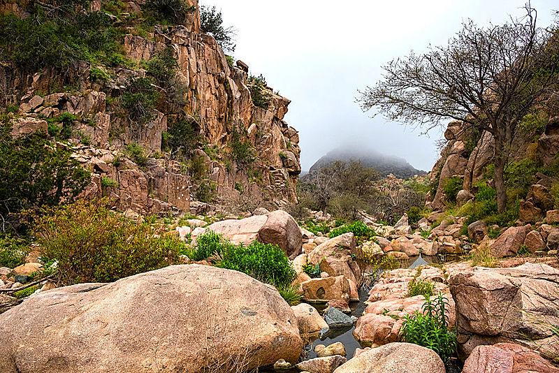 Taif, Saudi Arabia